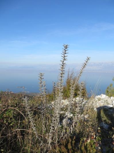Lake Shkoder
