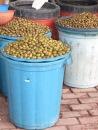 Olives in the Back Streets of Shkoder