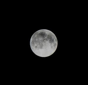 Moon 7